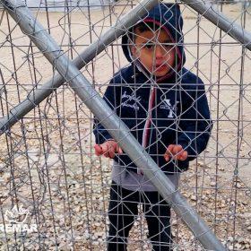 refugiados-2020-3